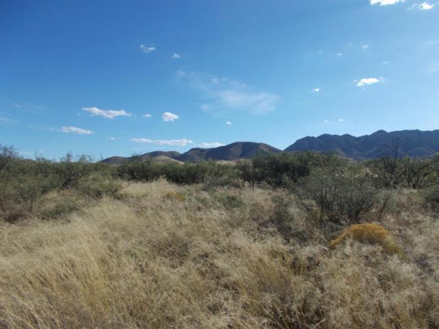 W Ironwood Road, Cochise, AZ 85606 (#21727523) :: Long Realty Company