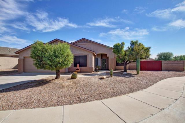 8234 N Pink Pearl Way, Tucson, AZ 85741 (#21727541) :: Long Realty Company