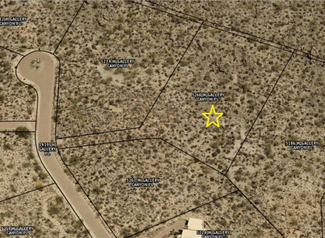 5266 W Gallery Canyon Place #9, Marana, AZ 85658 (#21727821) :: Long Realty - The Vallee Gold Team