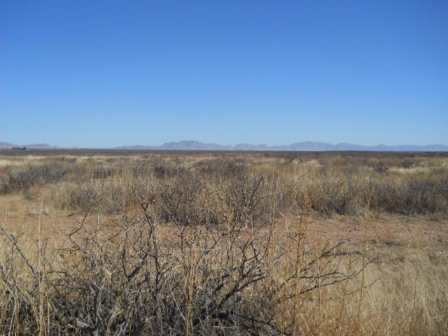 TBD S Wayward Winds #0, Willcox, AZ 85643 (#21727876) :: Long Realty Company