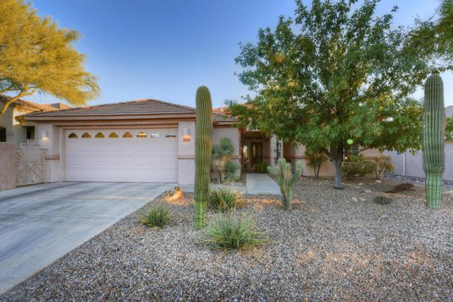 5111 W Desert Poppy Lane, Marana, AZ 85658 (#21727886) :: Long Realty - The Vallee Gold Team