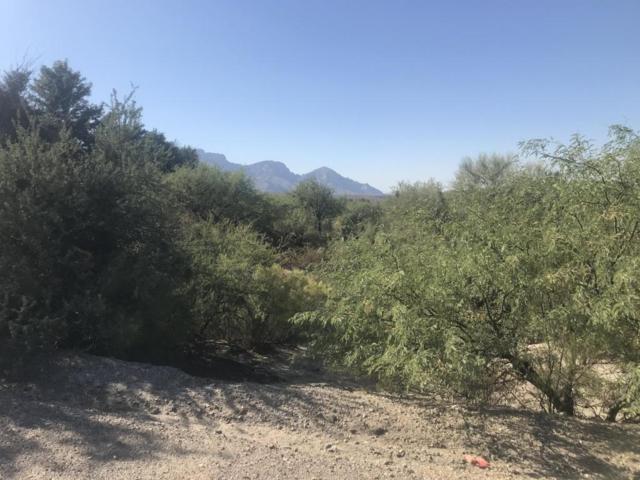 4420 E Golder Ranch Drive, Catalina, AZ 85739 (#21728019) :: Long Realty Company