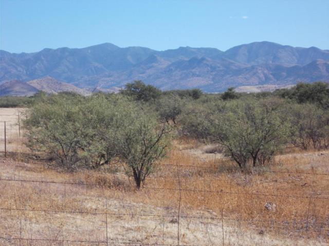 Highway 181 #1, Pearce, AZ 85625 (#21728086) :: Keller Williams