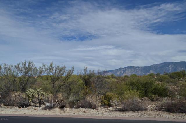 14170 N Silver Cloud Drive #10, Oro Valley, AZ 85755 (#21728384) :: Keller Williams
