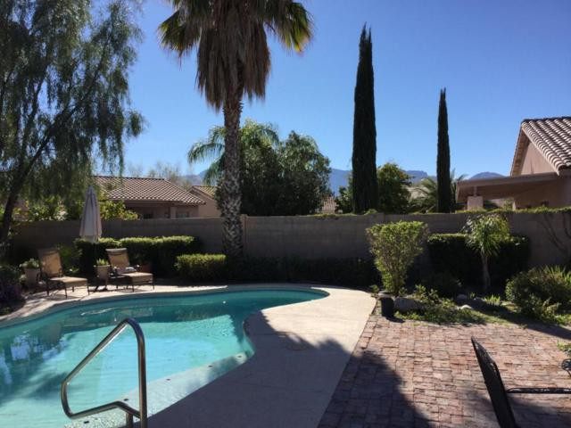 282 W Vistoso Highlands Drive, Oro Valley, AZ 85755 (#21728881) :: Long Realty - The Vallee Gold Team