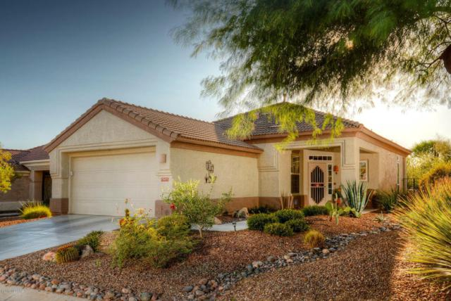 13455 N Heritage Canyon Drive, Marana, AZ 85658 (#21729055) :: Long Realty - The Vallee Gold Team
