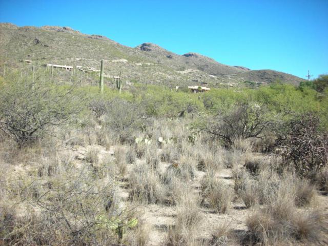 5240 N Mount Lemmon Short Road #5, Tucson, AZ 85749 (#21729645) :: The Josh Berkley Team