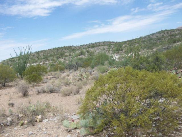 6790 S Camino Loma Alta, Tucson, AZ 85747 (#21729842) :: Long Realty - The Vallee Gold Team