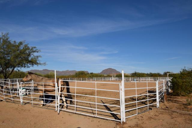 3740 S Irene Boulevard, Tucson, AZ 85735 (#21729871) :: Long Realty - The Vallee Gold Team