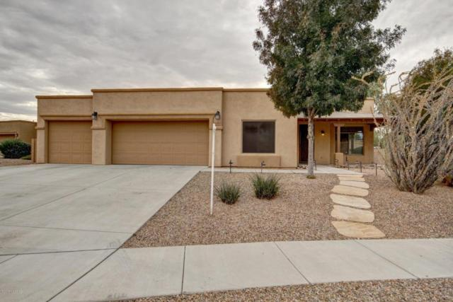 1203 N Golden Palomino Place, Tucson, AZ 85715 (#21729904) :: The Josh Berkley Team