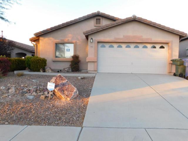 10379 E Danwood Way, Tucson, AZ 85747 (#21729961) :: Long Realty - The Vallee Gold Team
