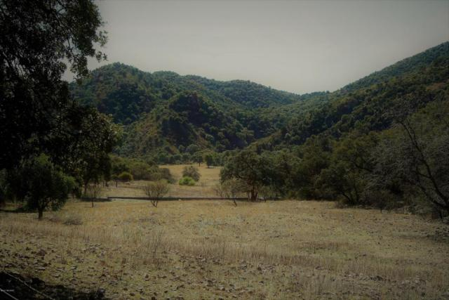 TBD Saric Turnoff Road, Nogales, MX 84000 (#21730029) :: Long Realty - The Vallee Gold Team