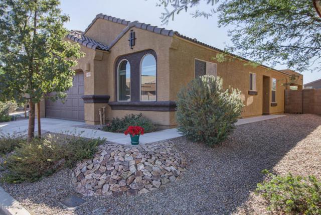 6413 W Yew Pine Way, Tucson, AZ 85743 (#21730052) :: RJ Homes Team