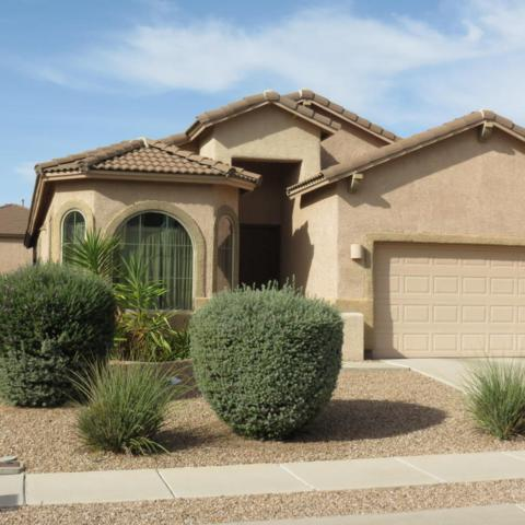 12893 N Tarzana Drive, Oro Valley, AZ 85755 (#21730076) :: RJ Homes Team