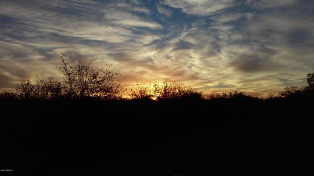 12155 W High Ridge Drive #52, Tucson, AZ 85736 (#21730097) :: RJ Homes Team