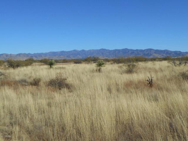 S. Pima Ave. #0, Pearce, AZ 85625 (#21730132) :: My Home Group - Tucson