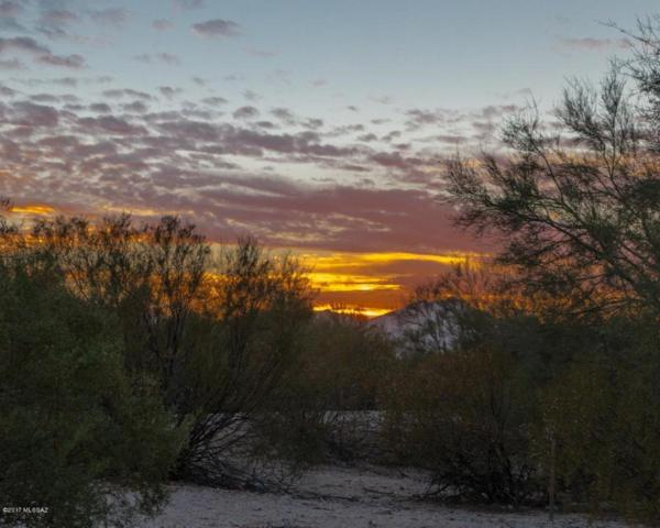 794 W Panorama Road, Tucson, AZ 85704 (#21730225) :: Long Realty - The Vallee Gold Team