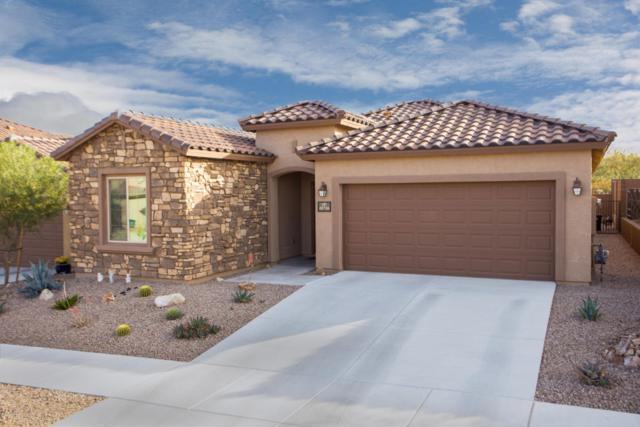 10716 E Winter Gold Drive, Tucson, AZ 85747 (#21730298) :: Long Realty - The Vallee Gold Team