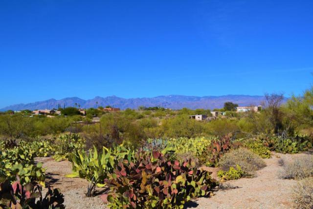 11305 E Pantano Trail, Tucson, AZ 85730 (#21730307) :: Long Realty - The Vallee Gold Team