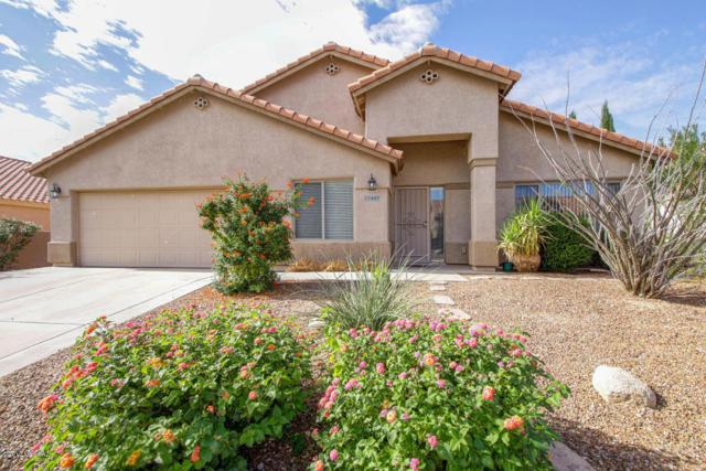 11441 N Scioto Avenue, Oro Valley, AZ 85737 (#21730309) :: Long Realty - The Vallee Gold Team