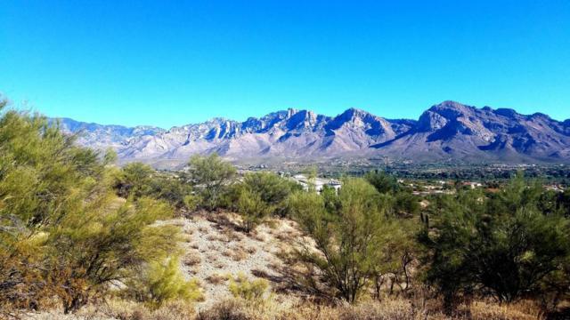 1060 W Broken Stone Place #82, Tucson, AZ 85737 (#21730450) :: Keller Williams