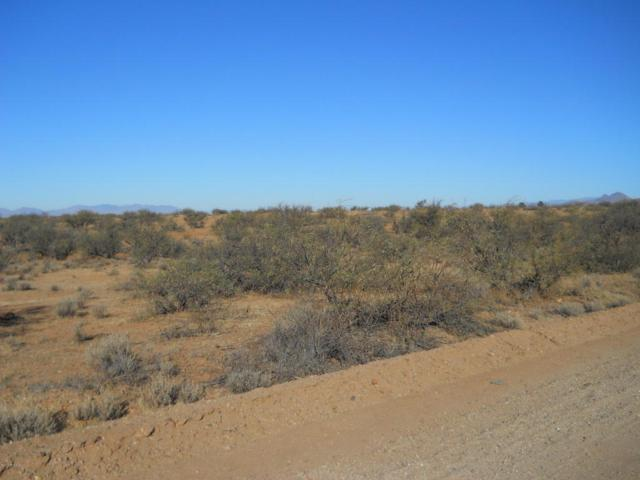 TBD S Bascom #79, Willcox, AZ 85643 (#21730985) :: Long Realty Company
