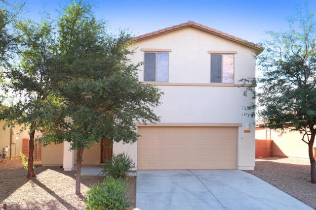 12083 W Makenna Lane, Marana, AZ 85653 (#21731006) :: Gateway Partners at Realty Executives Tucson Elite