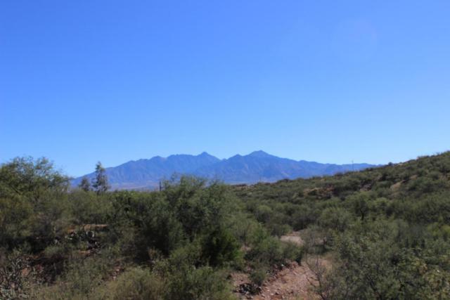 4142 W Calle Uno 25D, Green Valley, AZ 85622 (#21731075) :: RJ Homes Team