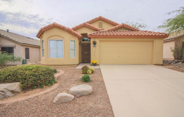 12695 N Blue Sage Drive, Marana, AZ 85658 (#21731101) :: The Josh Berkley Team