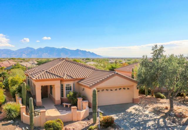 13066 N Sunrise Canyon Lane, Marana, AZ 85658 (#21731273) :: Gateway Partners at Realty Executives Tucson Elite