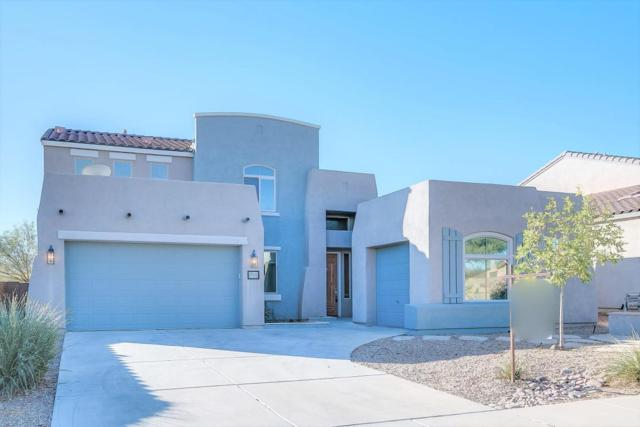 452 E Via Puente De La Lluvia, Sahuarita, AZ 85629 (#21731360) :: Gateway Partners at Realty Executives Tucson Elite