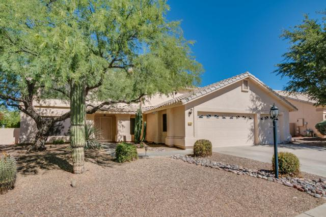 12625 N Pioneer Way, Oro Valley, AZ 85755 (#21731423) :: Gateway Partners at Realty Executives Tucson Elite