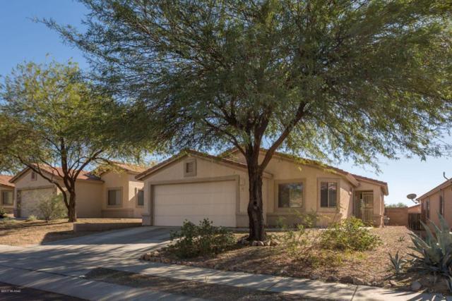 5583 W Sunset Vista Place, Marana, AZ 85658 (#21731509) :: Gateway Partners at Realty Executives Tucson Elite