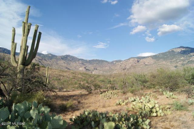 E Cactus Hill #10, Vail, AZ 85641 (#21731634) :: Long Realty Company