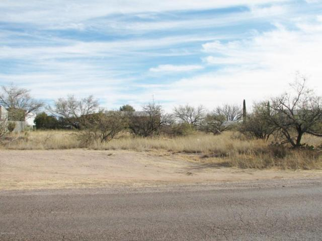 N Mescal Road #363, Benson, AZ 85602 (#21732395) :: RJ Homes Team