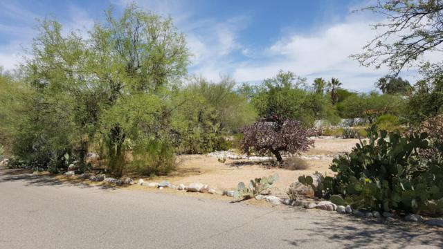 6655 N Oracle Road #11, Tucson, AZ 85704 (#21800047) :: Keller Williams