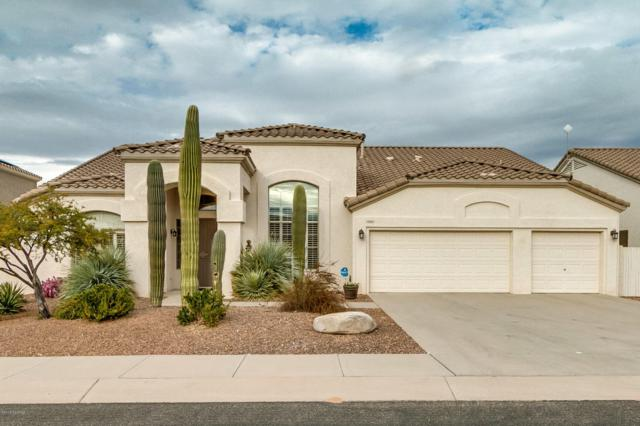 262 W Geeseman Springs Drive, Oro Valley, AZ 85755 (#21800438) :: Long Realty - The Vallee Gold Team