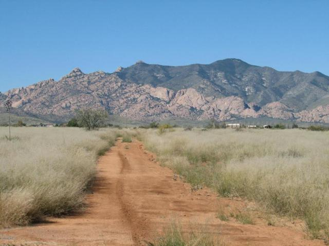 4.29 Acres E Windsong Lane #4, Pearce, AZ 85625 (#21800655) :: Long Realty Company