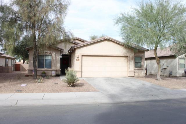 11772 W Farmall Drive, Marana, AZ 85653 (#21800757) :: The Josh Berkley Team