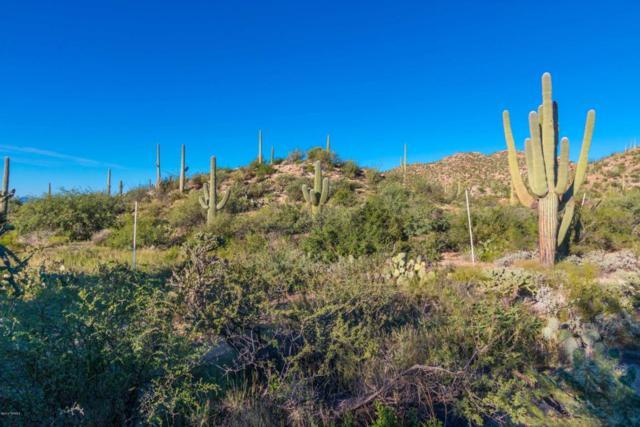 14687 N Granite Peak Place #268, Oro Valley, AZ 85755 (#21800881) :: Long Realty Company