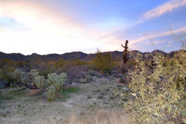 1192 W Tortolita Mountain Circle Na, Tucson, AZ 85755 (#21800898) :: My Home Group - Tucson