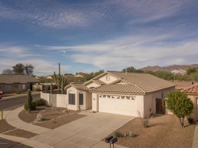 5496 W Dove Of Peace Drive, Marana, AZ 85658 (#21801265) :: The Josh Berkley Team