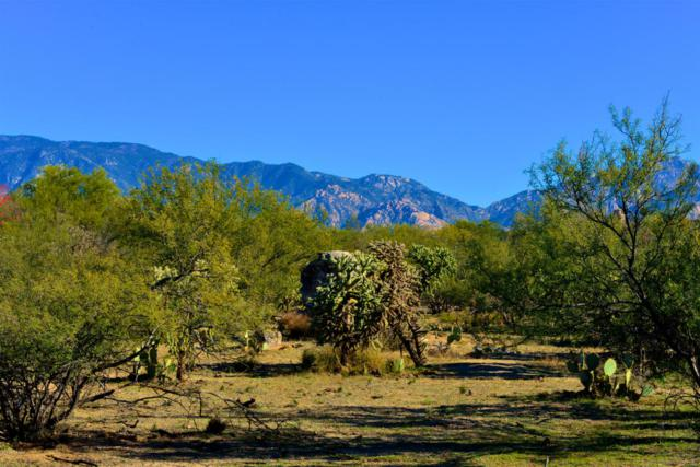 441 E Sun Spring Place #72, Oro Valley, AZ 85755 (#21801714) :: Long Realty - The Vallee Gold Team