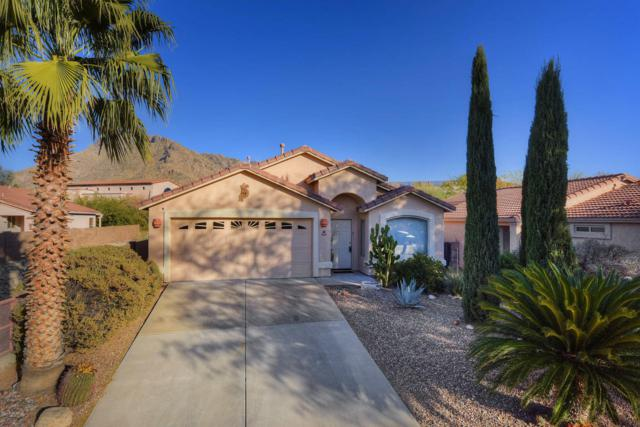 8340 N Austin Nikolas Court, Tucson, AZ 85704 (#21801727) :: The KMS Team