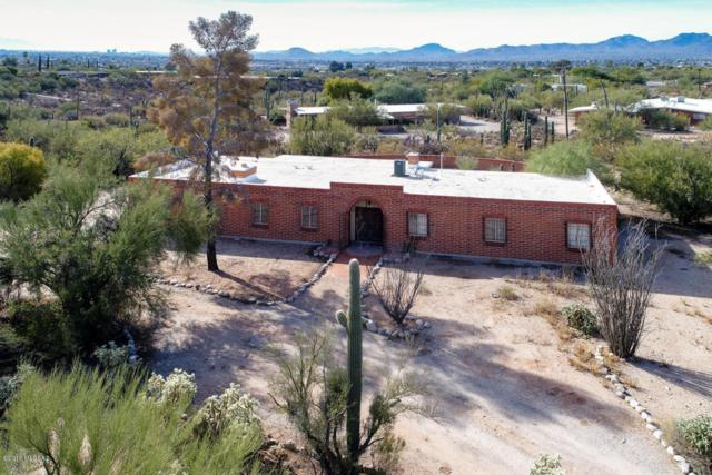 246 E Canyon View Drive, Tucson, AZ 85704 (#21801765) :: The KMS Team