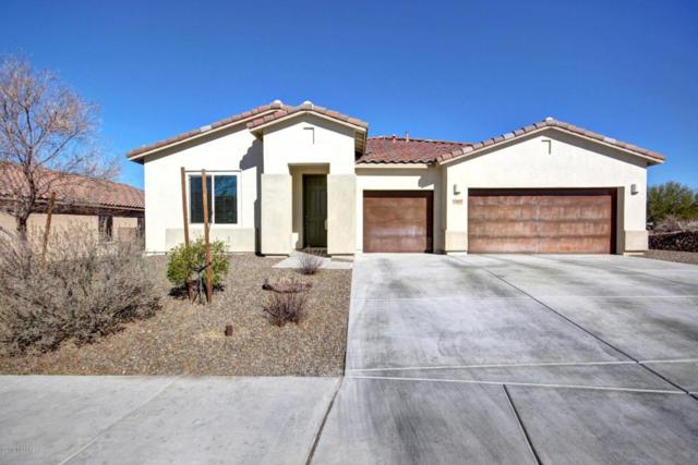 12667 N Fallen Shadows Drive, Marana, AZ 85658 (#21801834) :: Long Realty - The Vallee Gold Team