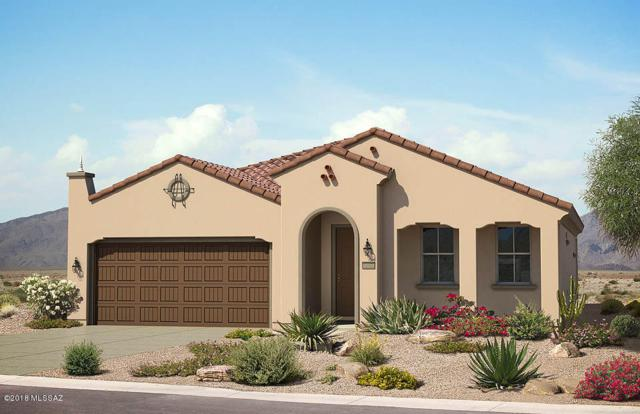 14027 N Del Webb Trail, Marana, AZ 85658 (#21801882) :: The KMS Team