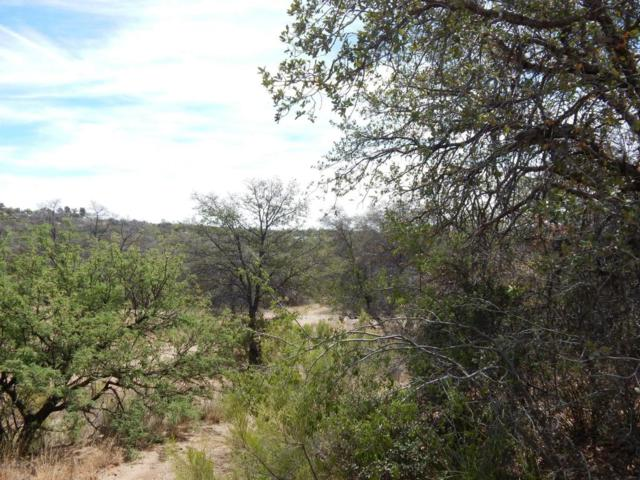 .82 Acres Off Calle Futura, Oracle, AZ 85623 (#21801907) :: Keller Williams