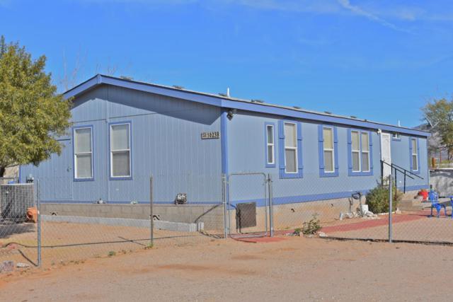 16238 N Avenida Del Oro, Tucson, AZ 85739 (#21801969) :: Long Realty Company