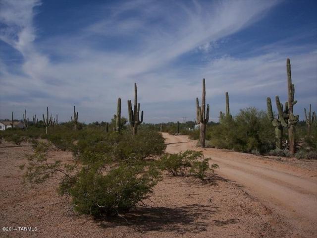 33542 S Brahma Trail 4 Ac., Marana, AZ 85658 (#21801997) :: Long Realty Company